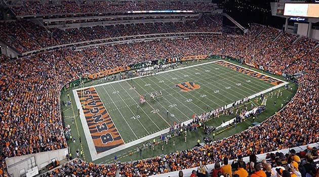 Cincinnati Bengals Live stream